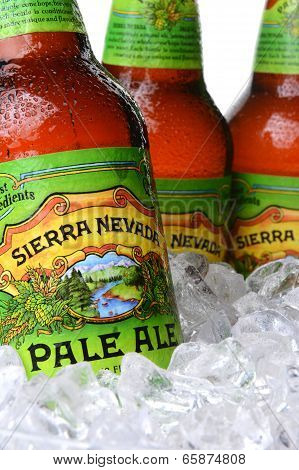 Closeup Of Sierra Nevada Pale Ale Bottles