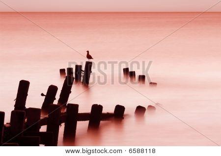 Sunrise Sea, Norfolk