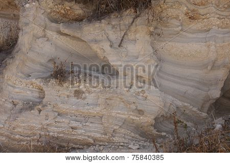 Texture Of A Sandstone