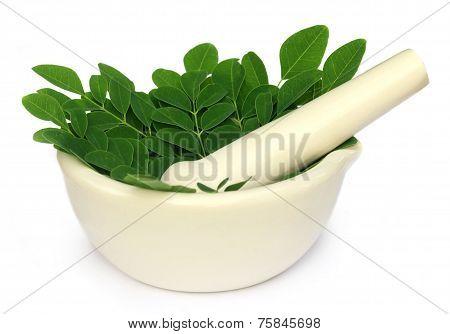 Mortar And Pestle With Medicinal Moringa Leaves