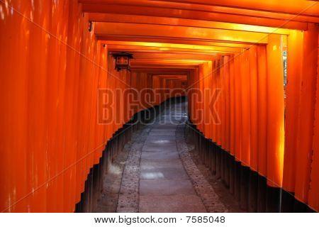 Japanese Torii Gates