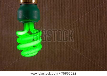Green Cfl Light Bulb Close-up