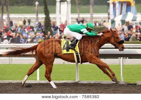 Caracortado And Jockey Paul Atkinson