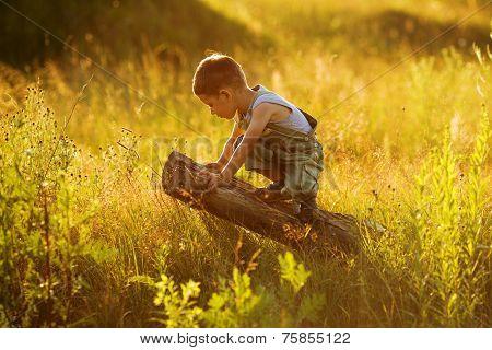 Little Boy Sitting On A Snag