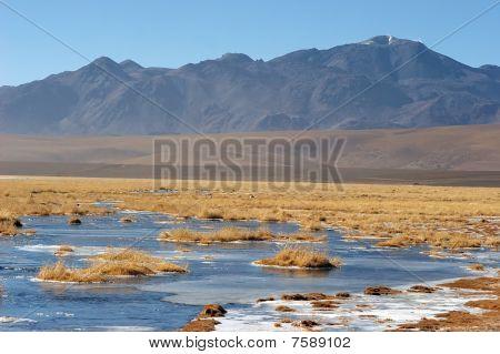 Frozen Lake In Atacama Altiplano, Chile