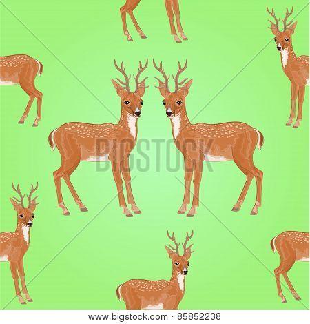 Seamless Texture Young Deer Vector