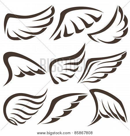 Wings. Vector Set
