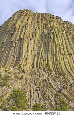 Columnar Jointing On A Volcanic Remnant