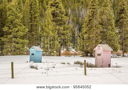Blue And Pink Outhouses
