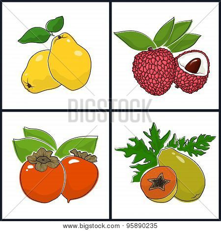 Papaya,  Persimmon, Quince,  Lichee