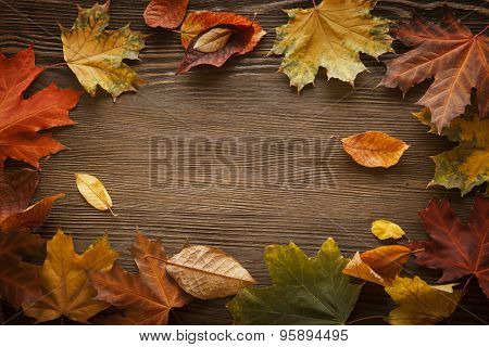 autumn leaf on wood black background