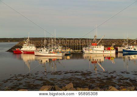 Fishing Fleet Reflecting In Calm Water