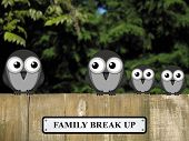 Representation of family break up or divorce with birds perched on a timber garden fence against a foliage background poster
