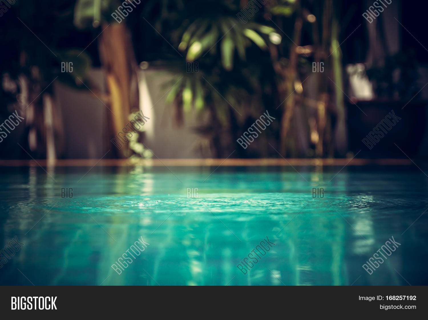 Swimming Pool Background In Vintage Style With Ripples On Turquoise Water And Tropical Plants Blurred
