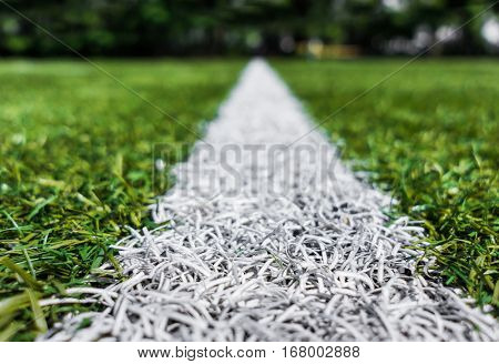 Lines on soccer football field - sport background