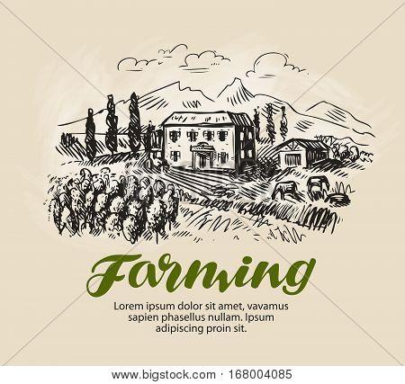 Farm sketch. Rural landscape, agriculture farming vineyard vector