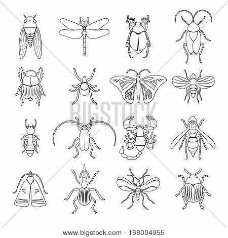 Outline insects icons set with different kinds of creatures on white background isolated vector illustration