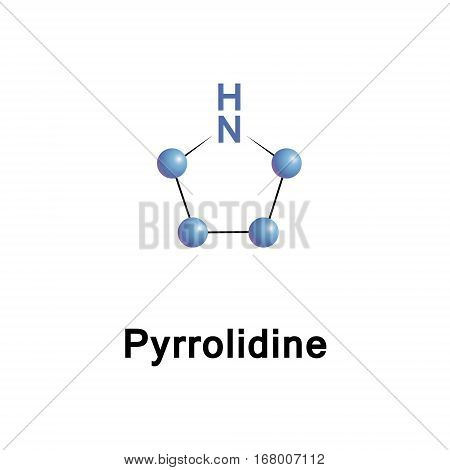 Pyrrolidine,or tetrahydropyrrole, is a cyclic secondary amine, classified as a saturated heterocycle.
