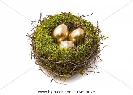 Golden eggs on a nest