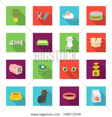 Cat equipment set icons in flat style. Big collection of cat equipment vector symbol stock