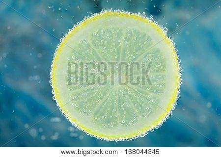 Lemon In Carbonated Water