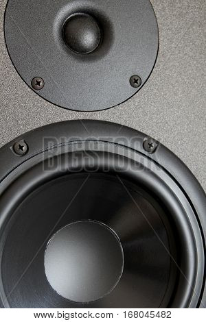 Woofer Or Bass Cone, And Tweeter Of A High End Hi-fi Speaker Cabinet