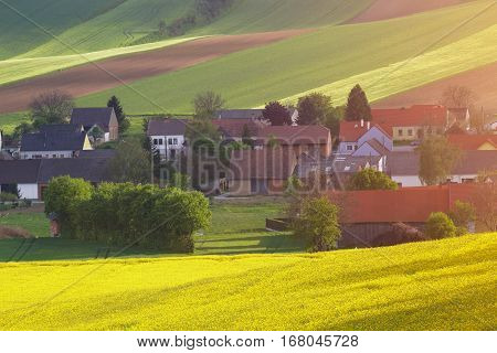 Spring evening rural scene. Village houses in evening sunlight. Colza field around farm. Colorful agriculture concept. Bright rural background.