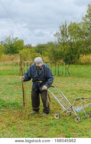 Close up of senior farmer using scythe to mow the lawn traditionally
