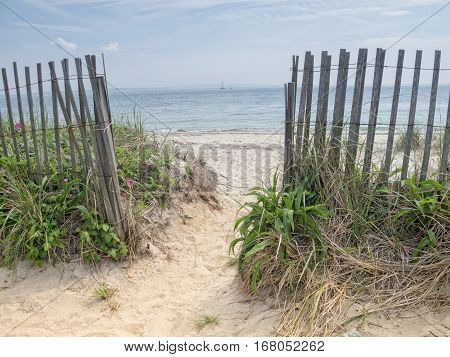 Footpath to the beach at Woods Hole, Cape Cod