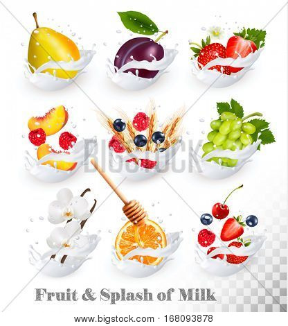 Big collection of fruit in a milk splash. Raspberry, strawberry, mango, vanilla, peach, apple, honey, orange, pear, grapes. Vector Set 4.