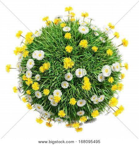 Green grass sphere with flowers, isolated on a white background. The symbol of spring, environment, growth and nature. 3D illustration