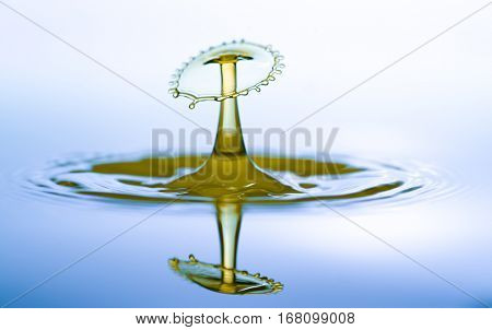 Water drop falling and drips on water mirror. Water drop splash and make perfect circles on surface