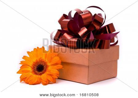 Orange gerber flower and gift box on white background