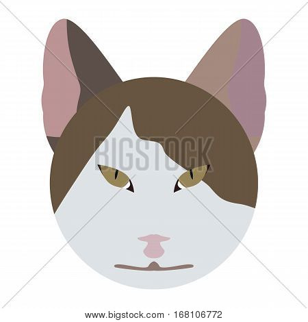 Vector cat face isolated on white background