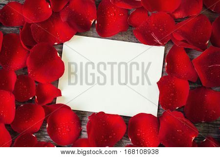 close- up red rose petals frame over empty card for your own text