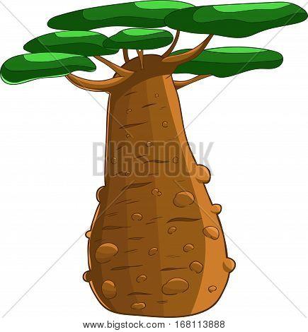 Baobab cartoon simplified drawing isolated desert tree