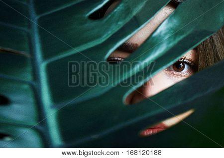 Portrait of beautiful girl with dark eyes, next to a green plant. Girl looks through green leaf ornamental plants