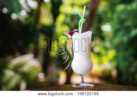 Pina Colada Cocktail with ice on the background of the tropics. A cold drink in the tropics
