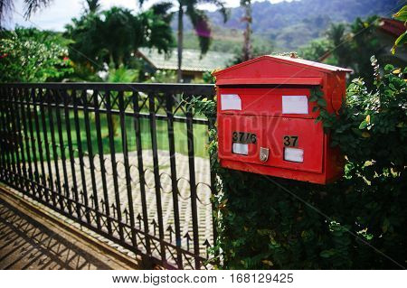 Red mailbox in the tropics. Mailbox in green