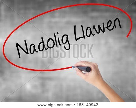 Woman Hand Writing Nadolig Llawen (happy Christmas In Welsh) With Black Marker Over Transparent Boar