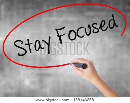 Woman Hand Writing Stay Focused With Black Marker Over Transparent Board