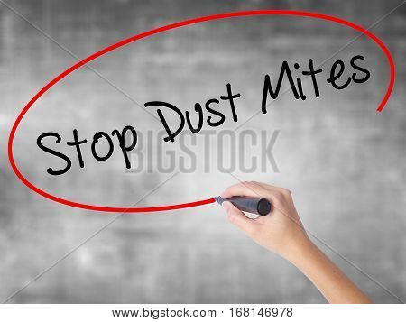 Woman Hand Writing Stop Dust Mites  With Black Marker Over Transparent Board.