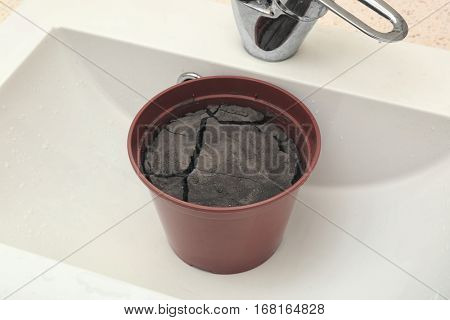 Water shortage concept. Pot with dry ground in white sink