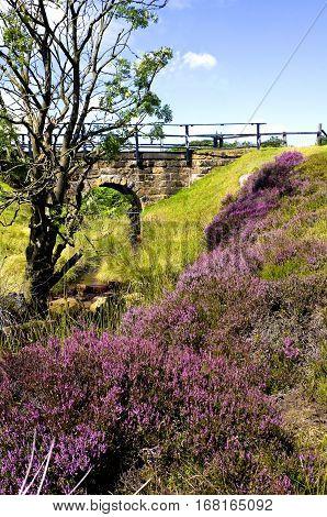 Hamer Bridge, North York Moors Hamer Moor is high on the North York Moors between Rosedale  and Egton Bridge