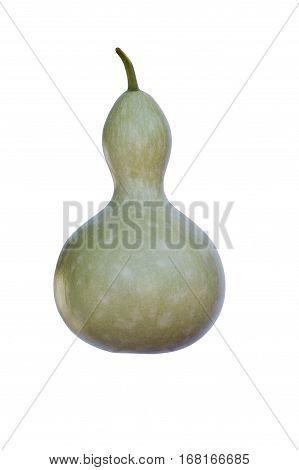 Bottle gourd (Lagenaria siceraria). Called White-flowered Gourd Calabash Opo Squash and Long Melon also. Image of gourd isolated on white background