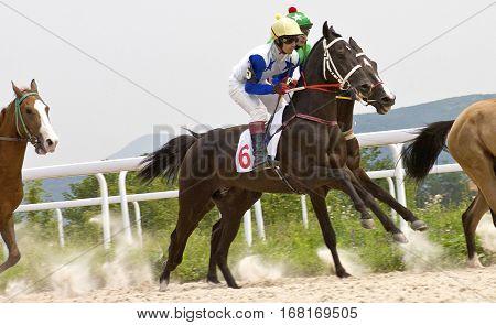 Finish horse racing the prize of Bolshoi Letni in Pyatigorsk,Northern Caucasus, Russia.