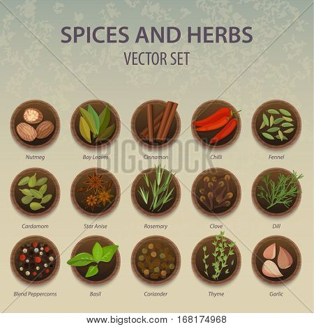 Seasoning and spice, herbs on set of isolated plates. Nutmeg food and bay leaves, red chilli pepper and fennel, cardamon, star anise and rosemary, dill and blend peppercorn, basil and coriander, thyme