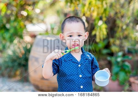 Thai Baby Boy Brushing Teeth. In Baby Hand Holding Cup