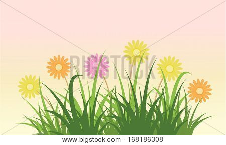 Beauty flower spring background vector flat collection stock