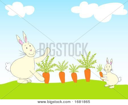 Illustration of two rabbits and carrots in a field poster